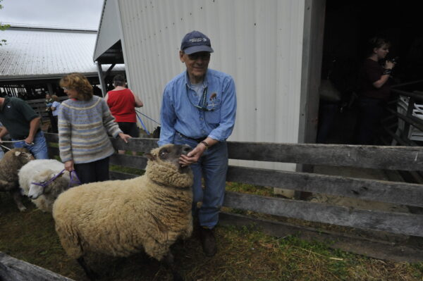 Ron Allen and Clun Forest Sheep